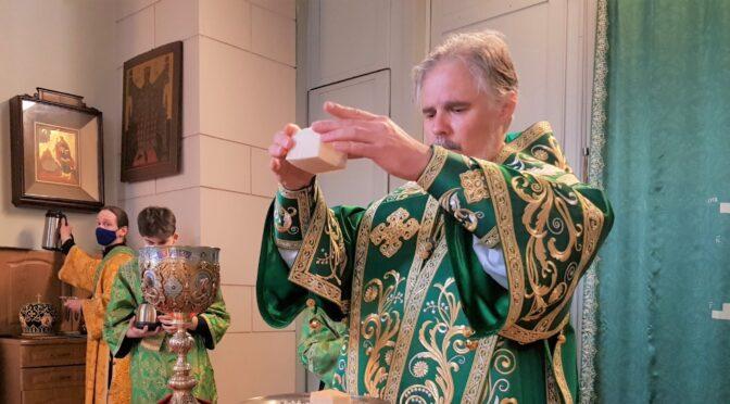 Литургия в праздник Входа Господня в Иерусалим в Борисоглебском соборе